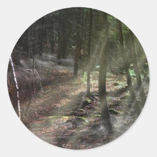 Fantasy Forest with Sunbeams Round Sticker