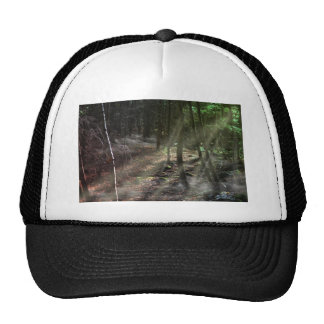 Fantasy Forest with Sunbeams Trucker Hat
