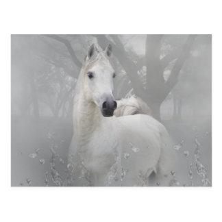 Fantasy Horse Postcard