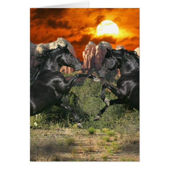 Fantasy Horses: Black Magic Card