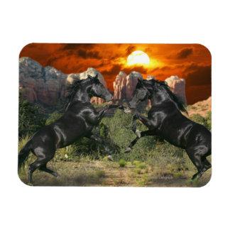 Fantasy Horses: Black Magic Magnet