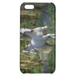 Fantasy Horses: Bluebell Wood iPhone 5C Cases