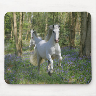 Fantasy Horses: Bluebell Wood Mouse Pad