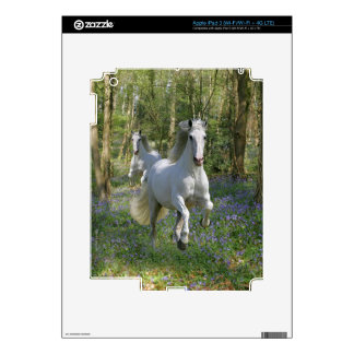 Fantasy Horses: Bluebell Wood Skins For iPad 3