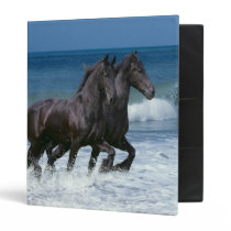 Fantasy Horses: Friesians & Sea Binder
