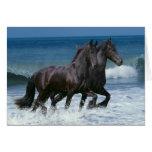 Fantasy Horses: Friesians & Sea Card
