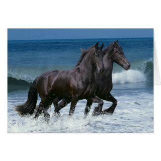 Fantasy Horses: Friesians & Sea Card