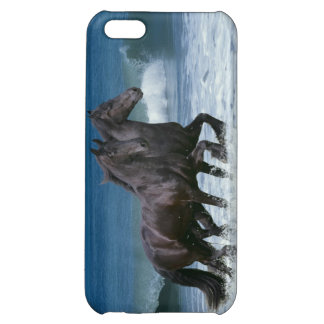 Fantasy Horses: Friesians & Sea Cover For iPhone 5C