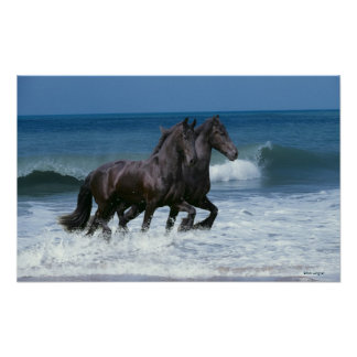 Fantasy Horses: Friesians & Sea Poster