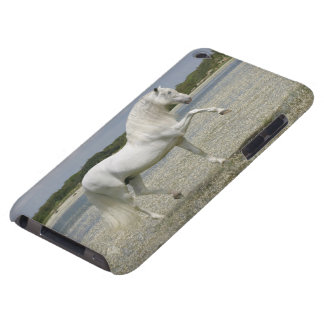 Fantasy Horses: Lord of the Lake Barely There iPod Case
