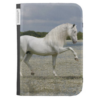 Fantasy Horses: Lord of the Lake Kindle 3 Cases