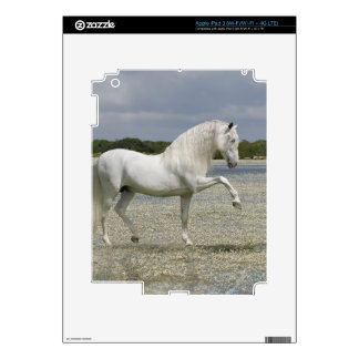Fantasy Horses: Lord of the Lake Decals For iPad 3