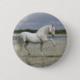Fantasy Horses: Lord of the Lake Pinback Button