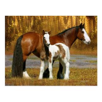 Fantasy Horses: Mare & Foal Postcard