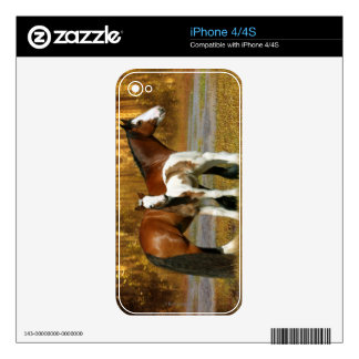 Fantasy Horses: Mare & Foal Skin For The iPhone 4