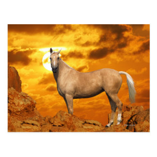 Fantasy Horses: Mountain Postcard