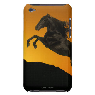 Fantasy Horses: Mountain Sunset iPod Touch Case