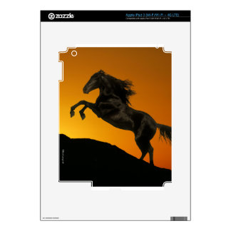 Fantasy Horses: Mountain Sunset Skins For iPad 3