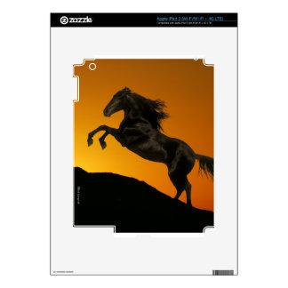 Fantasy Horses: Mountain Sunset Skins For iPad 3