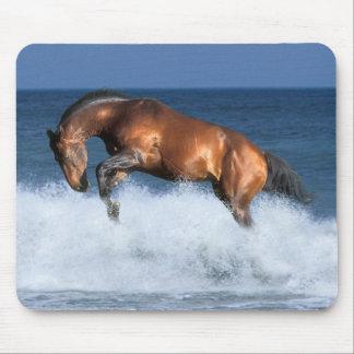 Fantasy Horses: Selle Francais & Sea Mouse Pad