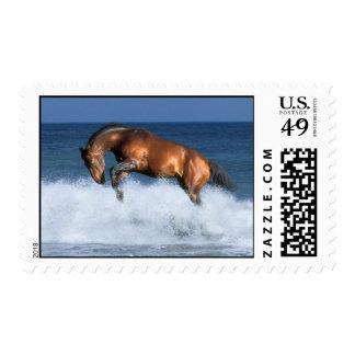 Fantasy Horses: Selle Francais & Sea Postage