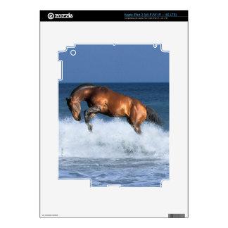 Fantasy Horses: Selle Francais & Sea Skins For iPad 3