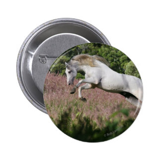 Fantasy Horses: Spring Gallop 2 Inch Round Button