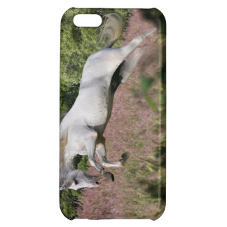 Fantasy Horses: Spring Gallop iPhone 5C Case