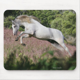 Fantasy Horses: Spring Gallop Mouse Pad