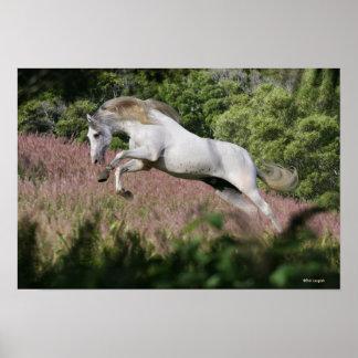 Fantasy Horses: Spring Gallop Poster