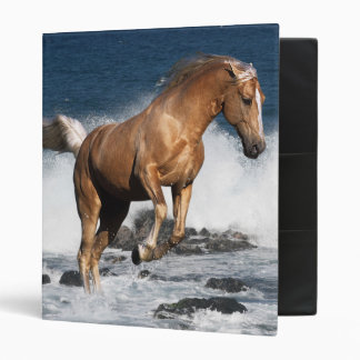 Fantasy Horses: Summer Splash Binder