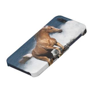 Fantasy Horses: Summer Splash Case For iPhone 5