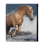 Fantasy Horses: Summer Splash iPad Cases