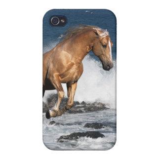 Fantasy Horses: Summer Splash iPhone 4 Cases