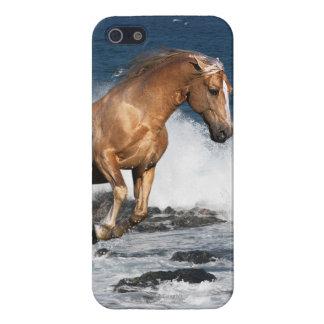 Fantasy Horses: Summer Splash iPhone 5 Cover