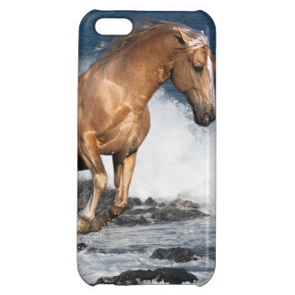Fantasy Horses: Summer Splash iPhone 5C Covers