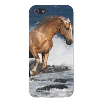 Fantasy Horses: Summer Splash iPhone SE/5/5s Cover