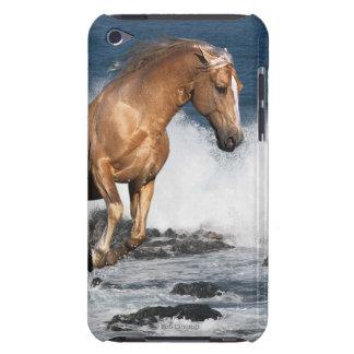 Fantasy Horses: Summer Splash iPod Touch Covers