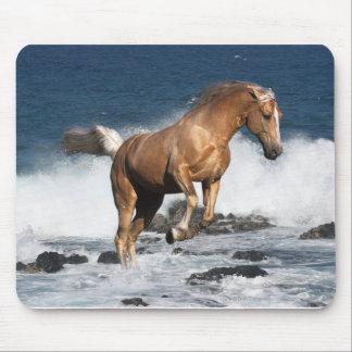 Fantasy Horses: Summer Splash Mouse Pad