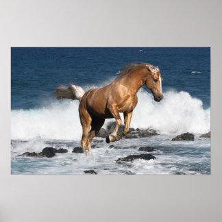 Fantasy Horses: Summer Splash Poster