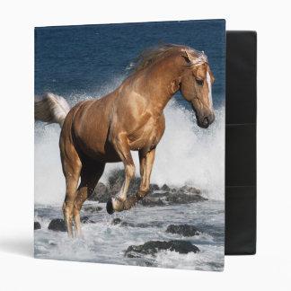 Fantasy Horses: Summer Splash Vinyl Binder