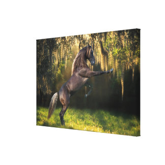 Fantasy Horses: Warrior Prince Canvas Print