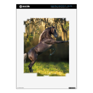 Fantasy Horses: Warrior Prince iPad 3 Decal