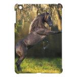 Fantasy Horses: Warrior Prince iPad Mini Covers