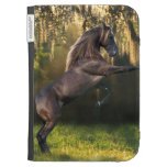 Fantasy Horses: Warrior Prince Kindle 3G Covers