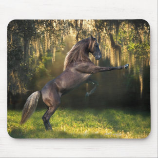 Fantasy Horses: Warrior Prince Mouse Pad
