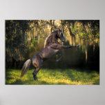 Fantasy Horses: Warrior Prince Poster