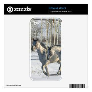 Fantasy Horses: Winter Wonderland iPhone 4 Decals