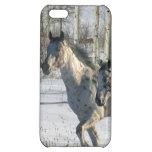 Fantasy Horses: Winter Wonderland iPhone 5C Cases