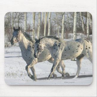 Fantasy Horses: Winter Wonderland Mouse Pad
